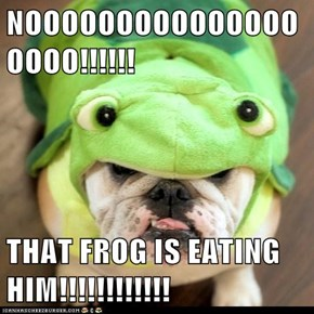 NOOOOOOOOOOOOOOOOOOO!!!!!!  THAT FROG IS EATING HIM!!!!!!!!!!!!
