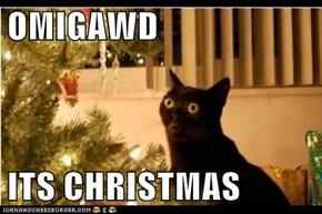 OMIGAWD  ITS CHRISTMAS