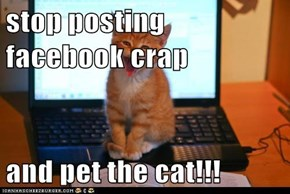 stop posting facebook crap  and pet the cat!!!
