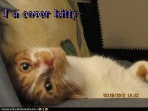 I a cover kitty