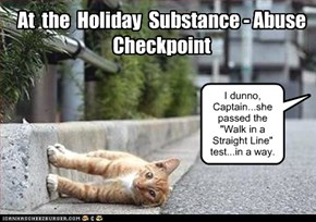 At  the  Holiday  Substance - Abuse  Checkpoint
