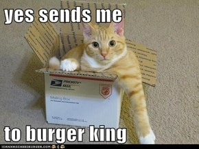 yes sends me  to burger king