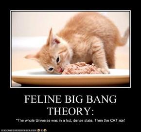FELINE BIG BANG THEORY:
