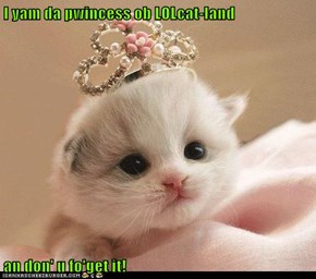 I yam da pwincess ob LOLcat-land  an don' u fo'get it!