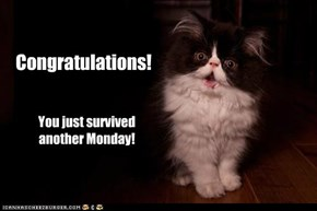 Survived another Monday