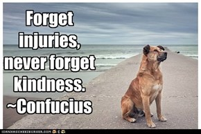 Forget injuries, never forget kindness. ~Confucius