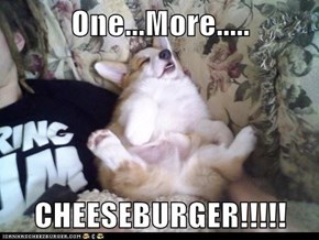 One...More.....  CHEESEBURGER!!!!!