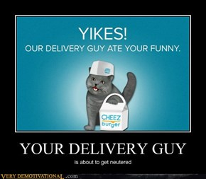 YOUR DELIVERY GUY