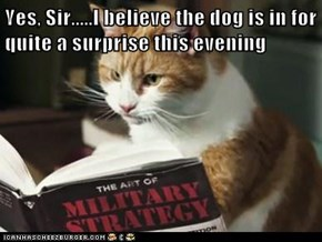 Yes, Sir.....I believe the dog is in for quite a surprise this evening
