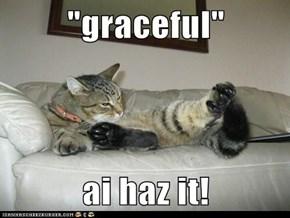 """graceful""  ai haz it!"