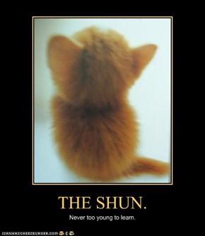 THE SHUN.