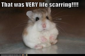That was VERY life scarring!!!!