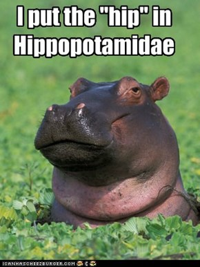 "I put the ""hip"" in  Hippopotamidae"