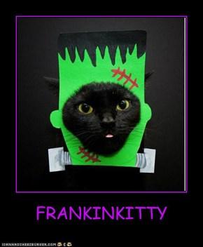 FRANKINKITTY