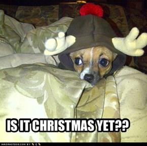 IS IT CHRISTMAS YET??