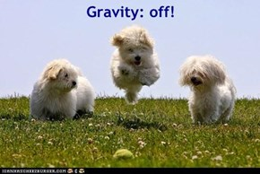 Gravity: off!