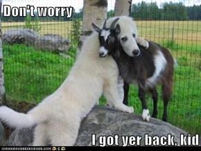 Don't worry  I got yer back, kid