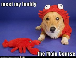 meet my buddy  the Main Course