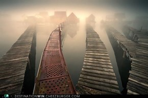 Misty Boardwalks