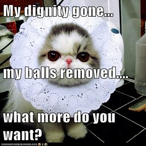 My dignity gone... my balls removed.... what more do you want?