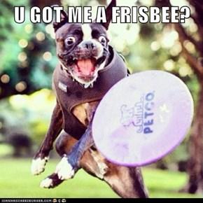 U GOT ME A FRISBEE?