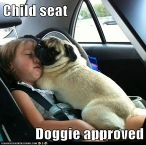 Child seat  Doggie approved