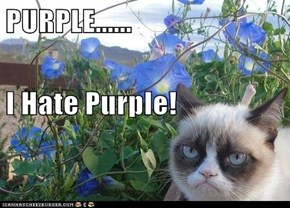 PURPLE...... I Hate Purple!