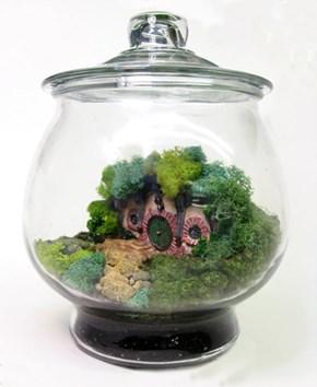 Hobbit Terrarium