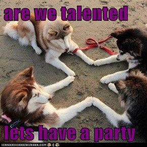 are we talented   lets have a party