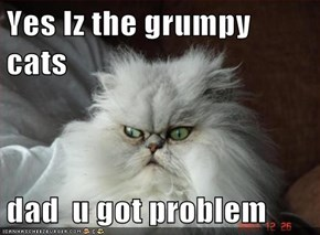 Yes Iz the grumpy cats  dad  u got problem