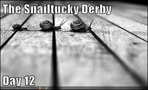 The Snailtucky Derby  Day 12