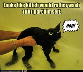 Looks like kitteh would rather wash THAT part himself.