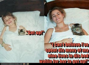 """""""Get up!"""" """"I can't believe I've                                                spent dis many of ma                                                 nine lives in dis bed                                                                  waitin for her to ge"""