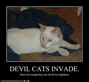 DEVIL CATS INVADE.