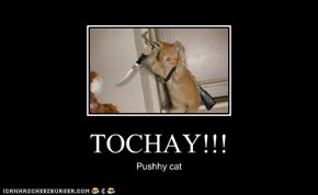 TOCHAY!!!