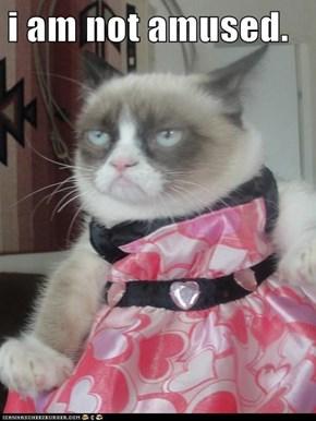 i am not amused.