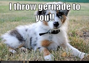 I throw gernade to you!!