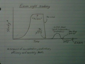 Exam Night Anatomy