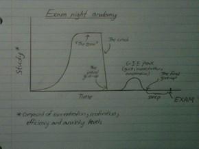 Exam Night Anatomy