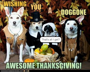 HAVE A YAPPY TURKEY DAY!
