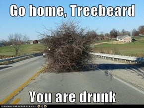Go home, Treebeard  You are drunk