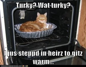 Turky? Wat turky?  I jus steppd in heirz to gitz warm...