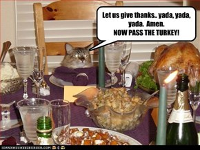 "Let's not ""mince"" words....HAPPY THANKSGIVING, CHEEZFRENDZ!"