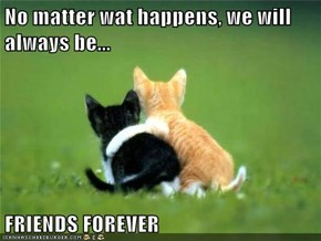 No matter wat happens, we will always be...  FRIENDS FOREVER