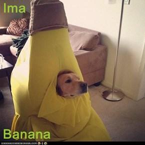 Ima   Banana
