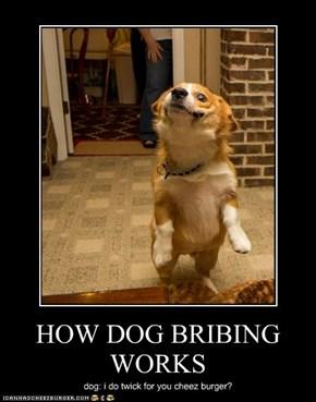 HOW DOG BRIBING WORKS