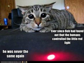 Ever since Bob had found out that the humans controlled the little red light