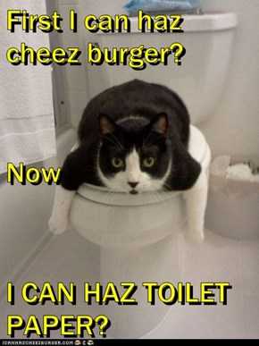 First I can haz cheez burger? Now I CAN HAZ TOILET PAPER?