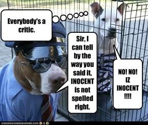 NO! NO! IZ INOCENT!!!!