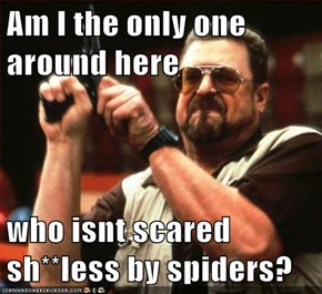 Am I the only one around here  who isnt scared sh**less by spiders?